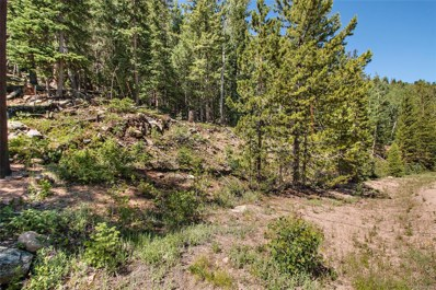 10229 Christopher Drive, Conifer, CO 80433 - #: 9864468