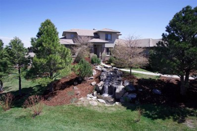 6163 Massive Peak Loop, Castle Rock, CO 80108 - #: 9916374