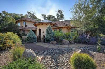 1133 E Ouray Avenue, Poncha Springs, CO 81242 - #: 9925545