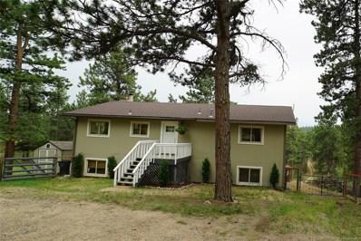 20 Meadow Drive, Bailey, CO 80421 - MLS#: 9961455