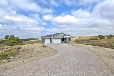3971 Eastout Avenue, Parker, CO 80138 - MLS#: 9978792