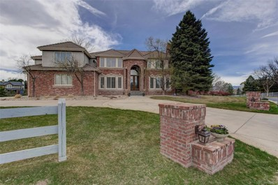 87 Falcon Hills Drive, Highlands Ranch, CO 80126 - #: 9983699