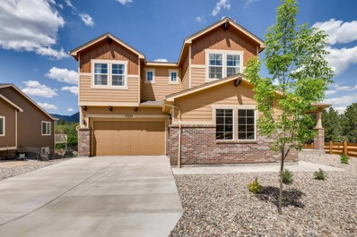 17227 Leisure Lake Drive, Monument, CO 80132 - MLS#: 9995747