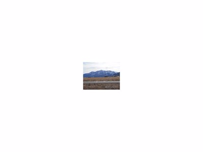 17400 Arabian Way, Buena Vista, CO 81211 - MLS#: C234387