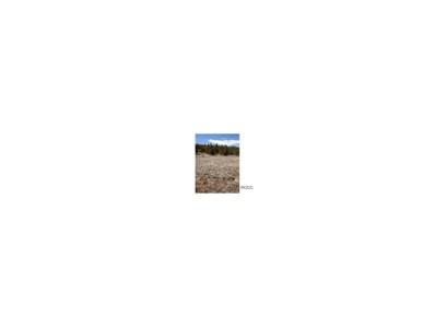 352 Lariat Loop, Hartsel, CO 80449 - MLS#: C235149