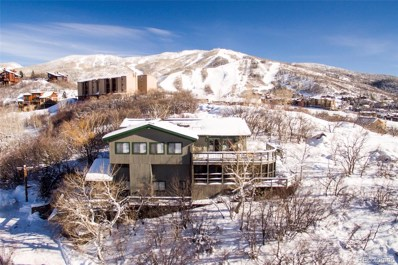 1820 Christie Drive, Steamboat Springs, CO 80487 - #: S171637