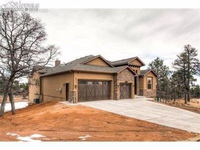 427 Mountain Pass View, Colorado Springs, CO 80906 - MLS#: 1065265
