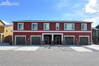 4851 Painted Sky View, Colorado Springs, CO 80916 - MLS#: 1142891