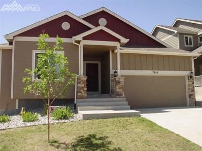 7846 Morning Dew Road, Colorado Springs, CO 80908 - MLS#: 1159675