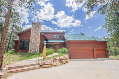 298 Pine Forest Road, Lake George, CO 80827 - #: 1182827
