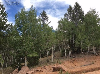 154 Ajax Court, Cripple Creek, CO 80813 - MLS#: 1222508