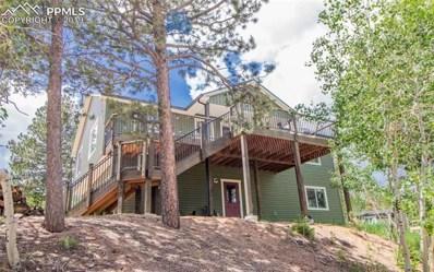 25 Sequoia Trail, Woodland Park, CO 80863 - #: 1244485