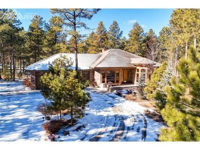 16122 Timber Meadow Drive, Colorado Springs, CO 80908 - MLS#: 1391824