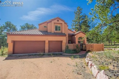 248 Pine Forest Road, Lake George, CO 80827 - #: 1437192