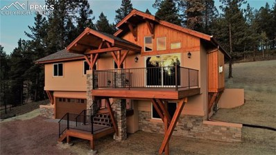 346 Pinewood Road, Florissant, CO 80816 - MLS#: 1509198