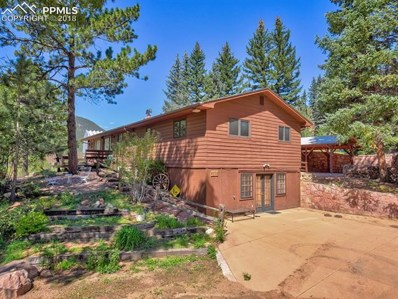 6230 Sand Gulch Road, Cascade, CO 80809 - MLS#: 1541478