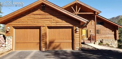 9110 Mountain Road, Cascade, CO 80809 - #: 1548896