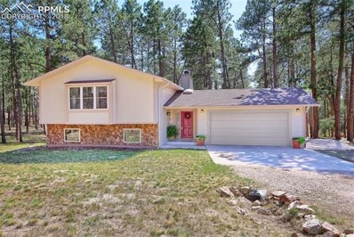 335 E Highway 105 Highway, Monument, CO 80132 - MLS#: 1673063