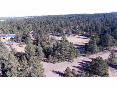 225 Homestead Lane, Florissant, CO 80816 - MLS#: 1754211