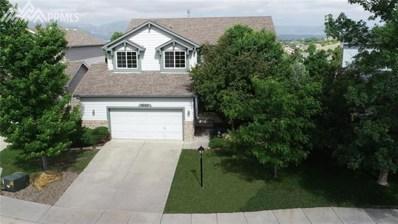 9542 Penstemon Court, Colorado Springs, CO 80920 - MLS#: 1780833