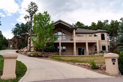38 Bridle Creek Court, Monument, CO 80132 - MLS#: 1799784