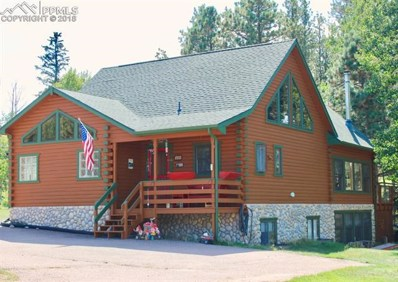 741 Sunnywood Place, Woodland Park, CO 80863 - MLS#: 1909041