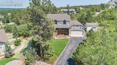 17585 Chipped Arrow Way, Monument, CO 80132 - MLS#: 1909443