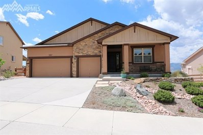 229 Kettle Valley Way, Monument, CO 80132 - MLS#: 1969627