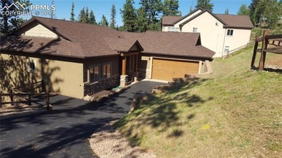 200 Iron Eagle Point, Woodland Park, CO 80863 - #: 1996626