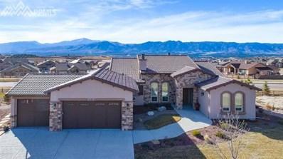13602 Stony Hill Point, Colorado Springs, CO 80921 - MLS#: 2031378