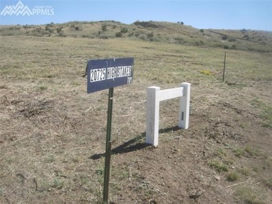 20725 High Stakes View, Fountain, CO 80817 - MLS#: 2104763