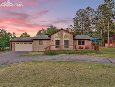 1320 Northwoods Drive, Woodland Park, CO 80863 - MLS#: 2163538