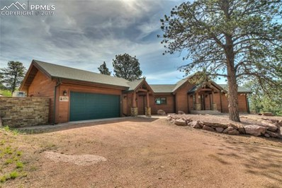 876 Old Ranch Road, Florissant, CO 80816 - MLS#: 2236487