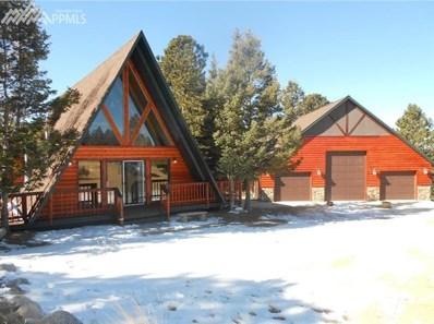 66 Blue Mesa Drive, Divide, CO 80814 - MLS#: 2363089
