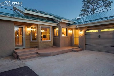 223 Rutgers Place, Woodland Park, CO 80863 - MLS#: 2404410