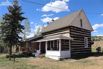 40230 Highway 24 Highway, Lake George, CO 80827 - MLS#: 2418573