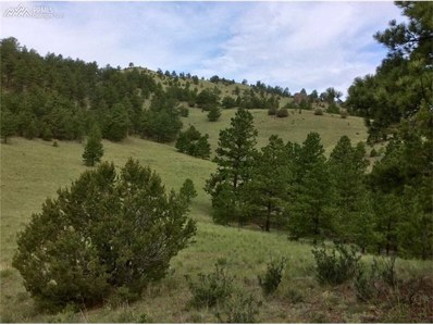 614 Chinook Road, Florissant, CO 80816 - MLS#: 2438114