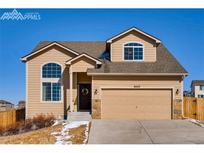 6663 Passing Sky Drive, Colorado Springs, CO 80911 - MLS#: 2458054