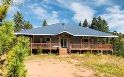 14 Apache Trail, Florissant, CO 80816 - MLS#: 2489440