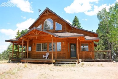 125 Bison Circle, Florissant, CO 80816 - MLS#: 2507025