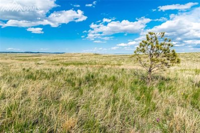 13650 Irish Hunter Trail, Elbert, CO 80106 - MLS#: 2547943