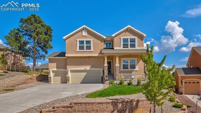 19733 Serenity Springs Point, Monument, CO 80913 - MLS#: 2978021