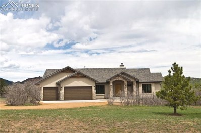 803 Forest View Way, Monument, CO 80132 - MLS#: 3009381