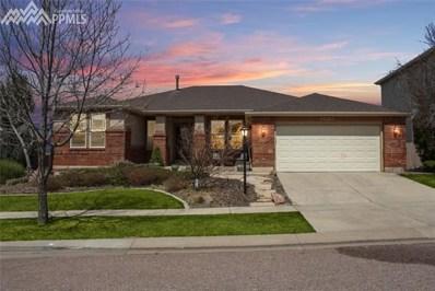 2890 Blackwood Place, Colorado Springs, CO 80920 - MLS#: 3053254
