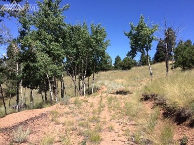 157 Paint Pony Lane, Florissant, CO 80816 - MLS#: 3322943