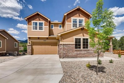 17227 Leisure Lake Drive, Monument, CO 80132 - MLS#: 3384012