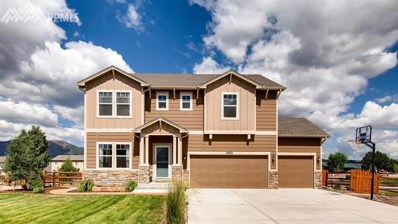17672 Water Flume Way, Monument, CO 80132 - MLS#: 3436421