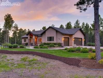 3985 Canopy Court, Colorado Springs, CO 80908 - MLS#: 3575246