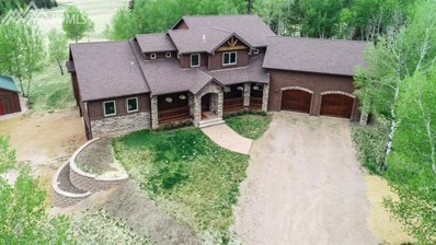 1471 County 51 Road, Divide, CO 80814 - MLS#: 3590200