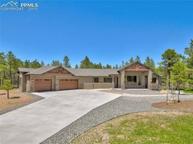 11730 Bison Meadows Court, Colorado Springs, CO 80908 - #: 3721830